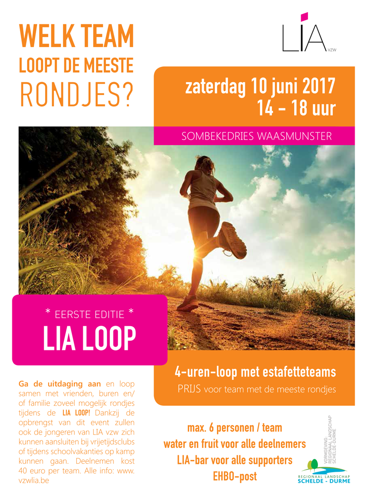 Flyer_LIA-loop